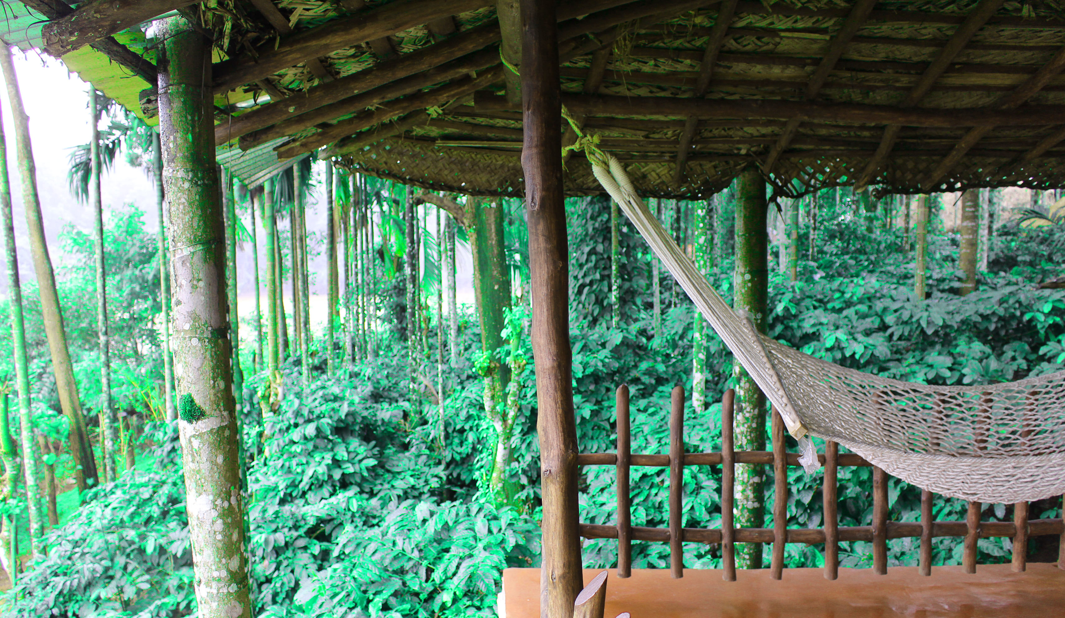 Responsible travel shanthikunnj homestay the satori saga for Balcony hammock